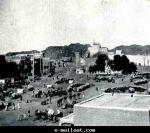 IMG (193)
