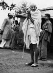 Gandhi Acknowledges Greetings